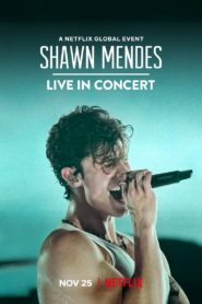 Shawn Mendes: Live in Concert